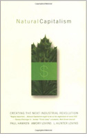 buchcover-natural-capitalism